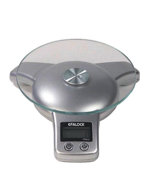 efalock digital scale
