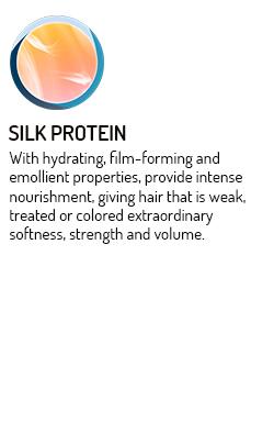 mc-silk-protein