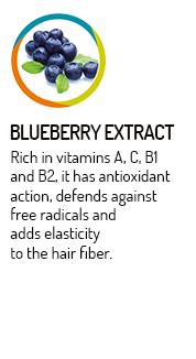 styleperfetto-estratti-mirtillo-blueberry-extract