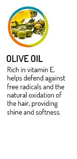 styleperfetto-estratto-olio-oliva